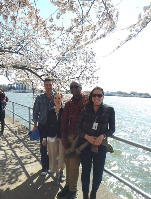 ForestGEO staff at Cherry Blossom festival
