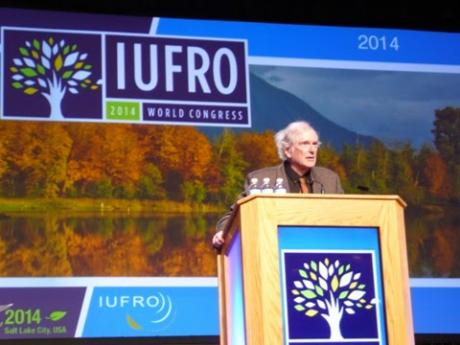 Steven Hubbell receives high honors at the 2014 IUFRO