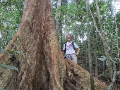 KC with a buttressed tree in Khao Chong, Thailand