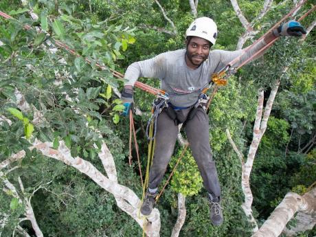 Moses Libalah in climbing gear above the tree canopy.