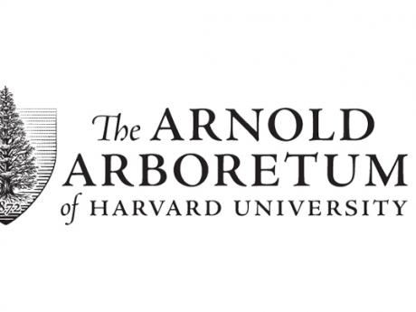 The Arnold Arboretum of Harvard University logo