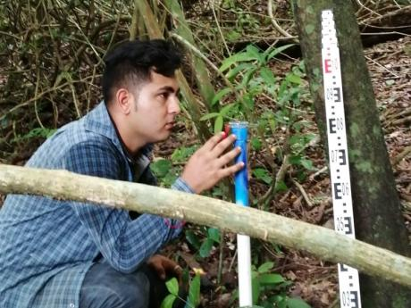 A field crew worker crouching near a stake/post in the forest.