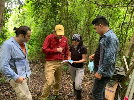 A field crew stands in the forest and reviews data on a clipboard.