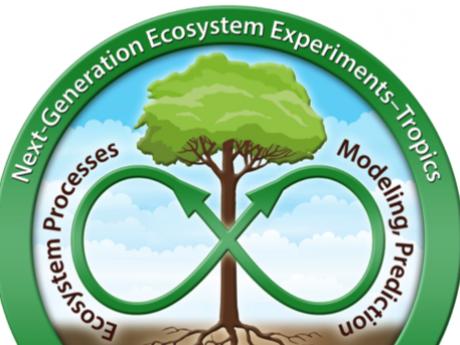 ngee tropics logo
