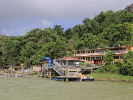 bci field station in panama