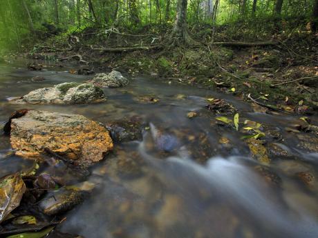 stock photo creek