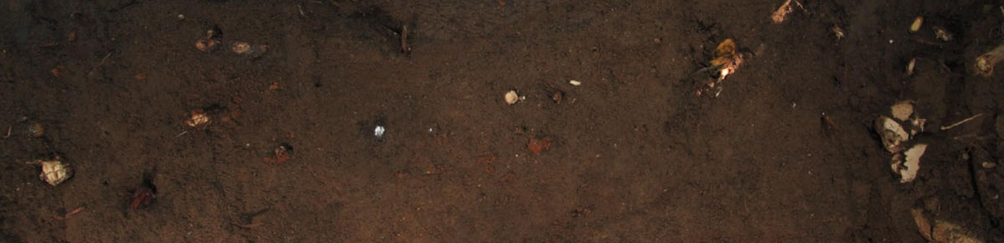 soil profile in HKK