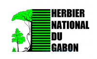 Herbier National du Gabon