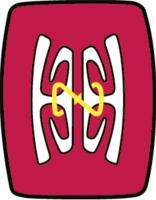 Papua New Guinea University of Technology's logo